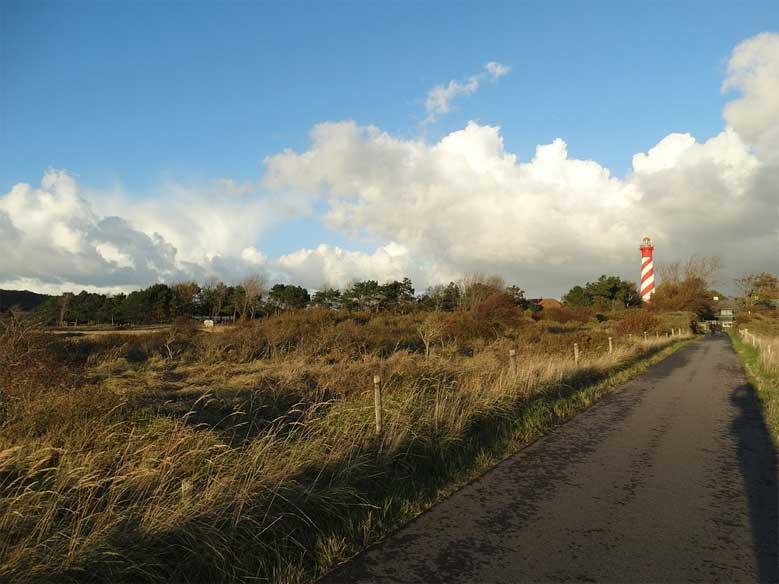 Dünenlandschaft bei Burgh-Haamstede mit dem markantischen Leuchtturm