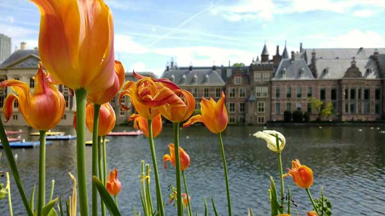 Parlament in Delft