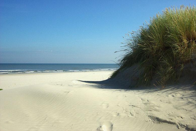 Dünen auf der Insel Ameland, Niederlande