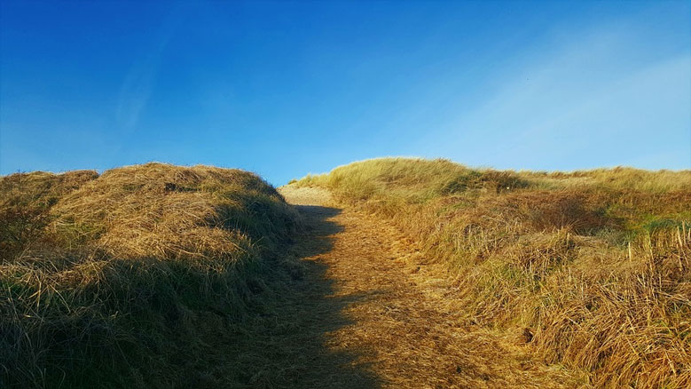Dünenlandschaft bei De Koog, Texel
