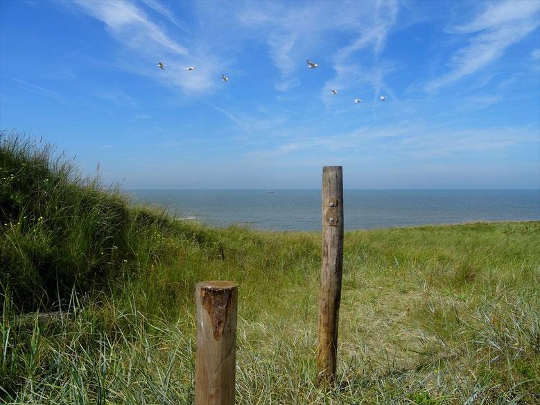 Dünen, Nordholland
