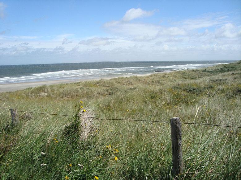 Dünenlandschaft am Meer von Vlieland