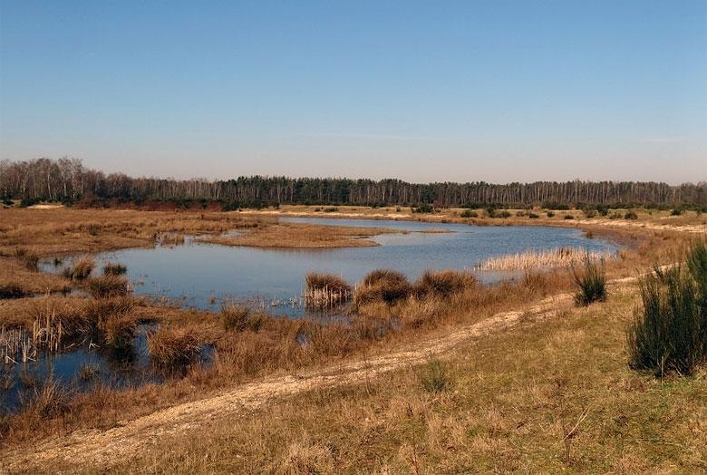 Naturschutzgebiet in Brabant