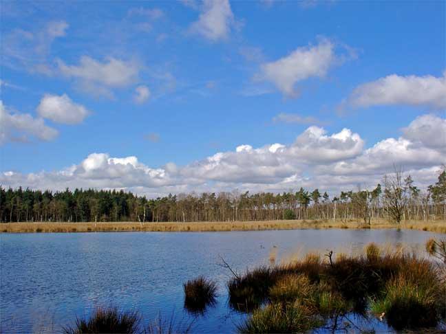 Moorlandschaft mit zahlreichen Seen bei Gieten/Borger
