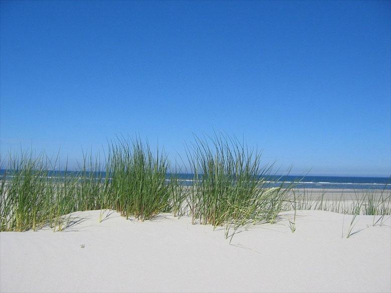 Strand Insel Ameland, Niederlande