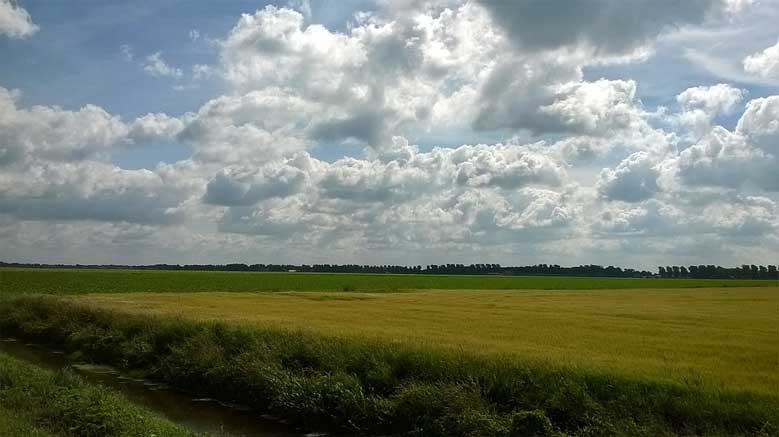 Landschaft der Provinz Drenthe