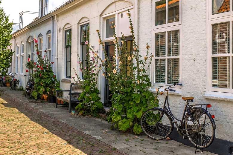 Romantische Häuser mit Stockrosen in Middelburg in Zeeland