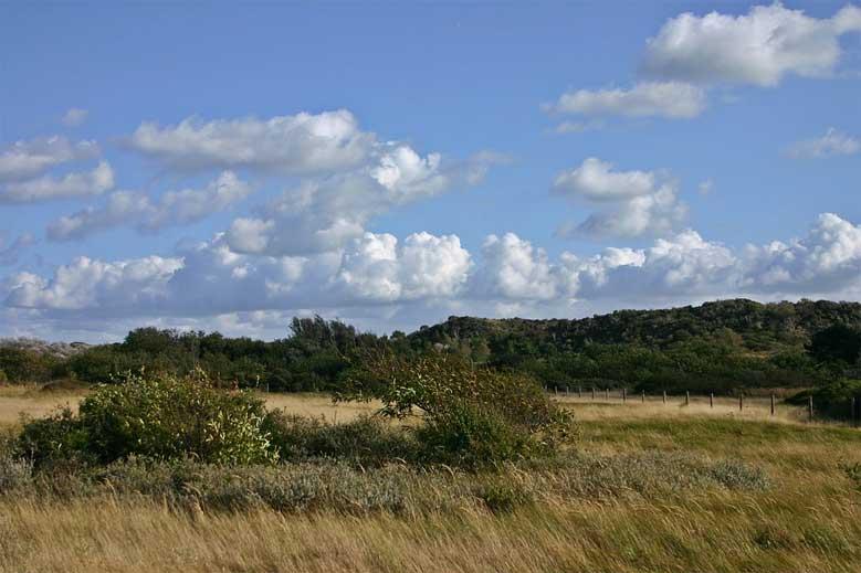 Naturschutzgebiet auf Schouwen-Duiveland