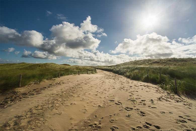 Strandweg durch die Dünen in Nordholland
