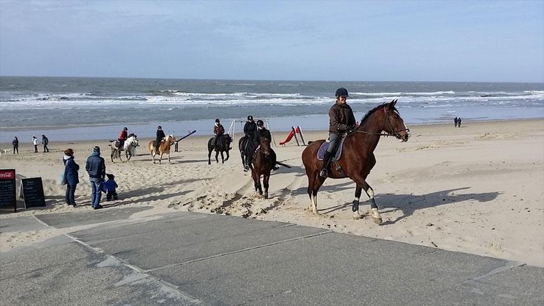 Strand von Oostkapelle, Zeeland