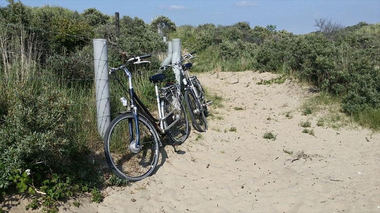 Radausflug in Dünen bei Zandvoort, Nordholland