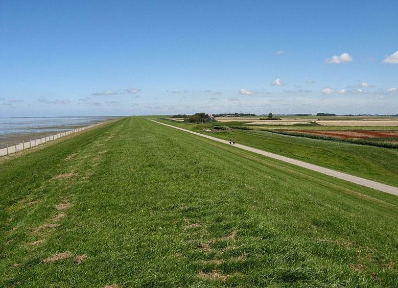 Radweg entlang des Deiches am Wattenmeer in Friesland, Holland