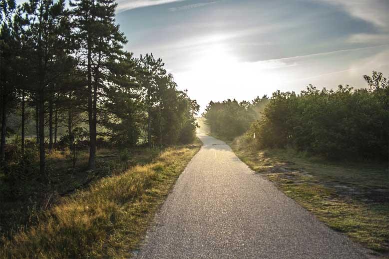 Radweg bei Nes auf der Insel Ameland