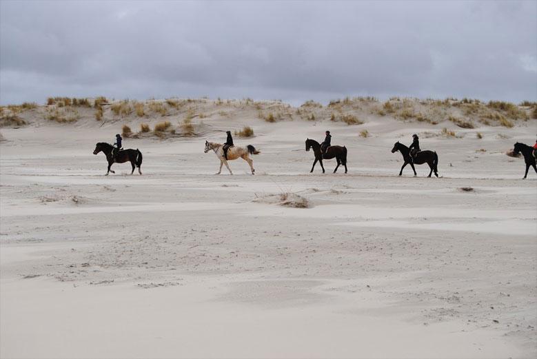 Reiten in den Dünen an der Küste Hollands