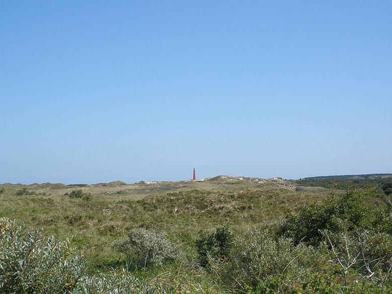 Schiermonnikoog mit dem Leuchtturm Noordertoren im Hintergrund
