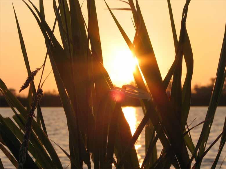 Sonnenuntergang in Sneek
