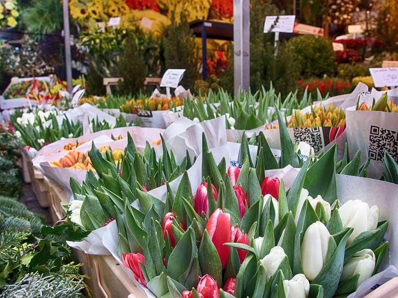 Tulpen am Markt in Amsterdam