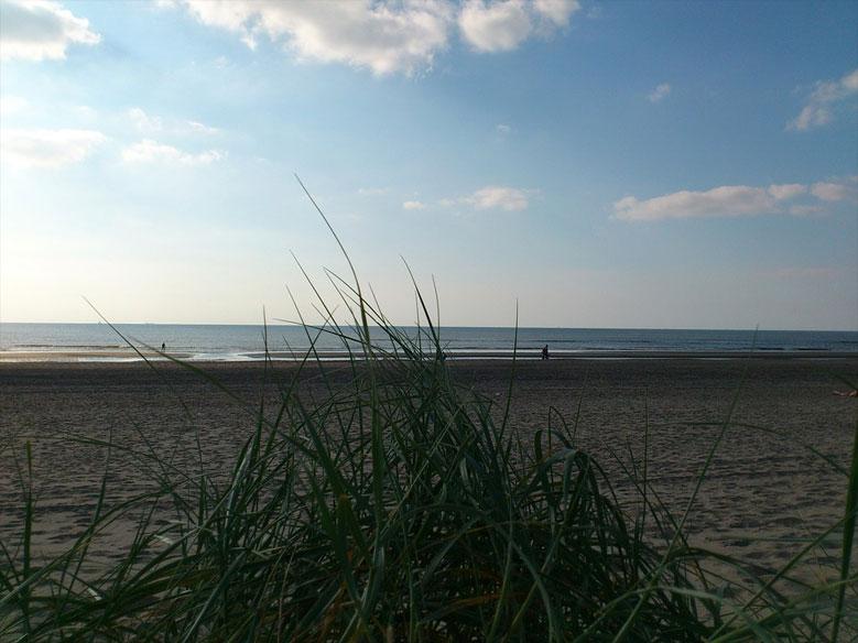 Spaziergang am Strand von Zandvoort